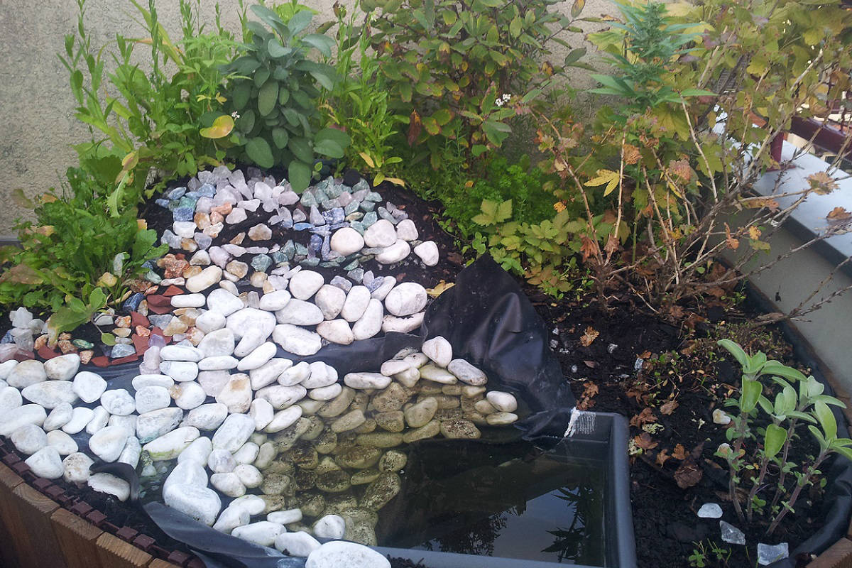 Am hinteren Teil des Teiches befindet sich der Kompost, der zur internen Humusbildung dienen soll.