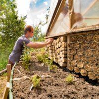 Praktische Zweitnutzung! Sockelbau gegen Süden gleich kombiniert mit Insektenhotel Ausfachungen. Voran noch als Dämmende Schicht eine Hochbeet Konstruktion mit guten Beeren.