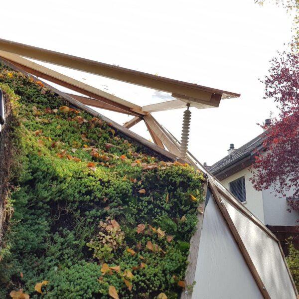 Auf zuviel Wärme und Feuchtigkeit reagierendes Dachfenster am Aquaponik-Geodome.