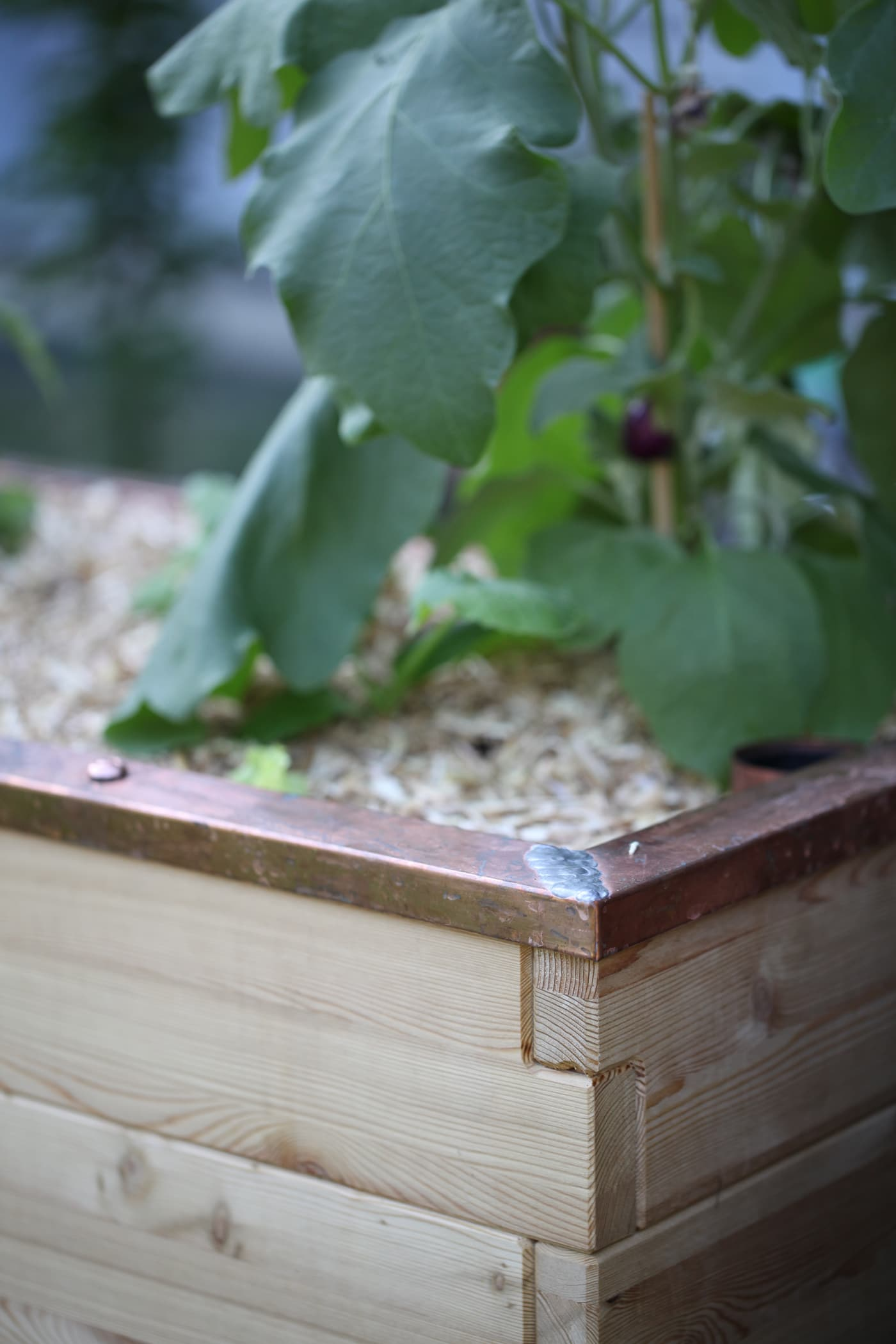 Hochbeet Plus Perfekte Fur Den Kleinen Raum Auf Deinem Balkon